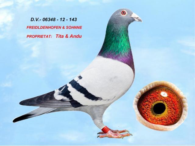 d-v-06348-12-143-m-1.jpg