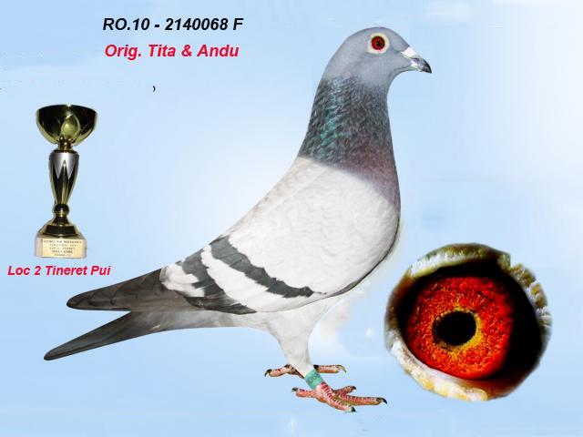 ro-10-2140068-f-1.jpg